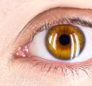 Akshi - Eye